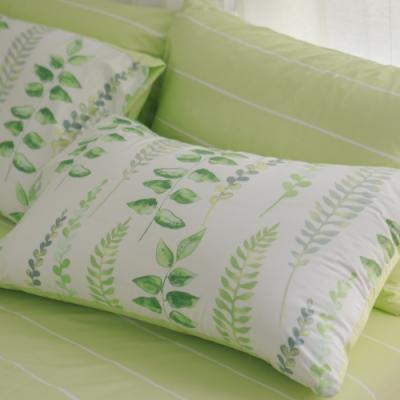 翔仔居家 台灣製 100% 精梳純棉薄被套床包4件組 - 加大(微風)