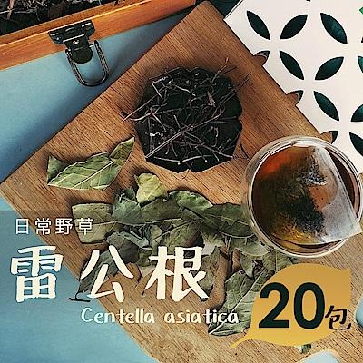 日常野草 青春活力 雷公根青草茶(5gX20包)(10包/盒,共2盒)