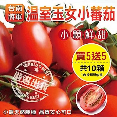 (買1送1)【天天果園】台南將軍溫室薄皮玉女小蕃茄(每盒約600g) 共10盒
