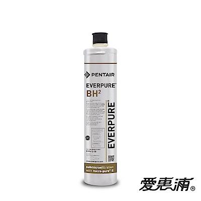 EVERPURE 愛惠浦 公司貨 BH2淨水濾芯