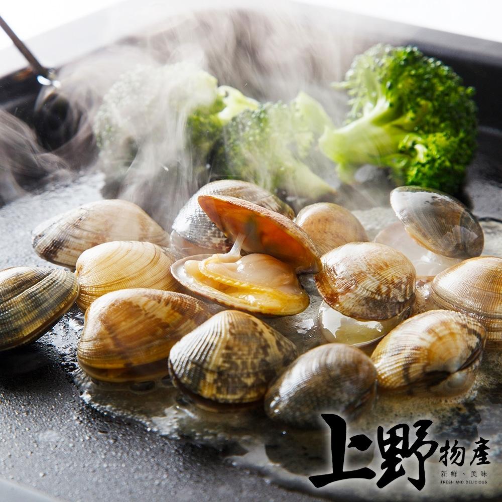 (滿899免運)【上野物產】急凍生鮮海瓜子(500g±10%/包)*1包
