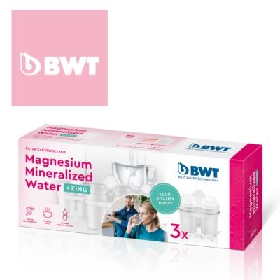 BWT德國倍世鋅鎂離子濾芯3入