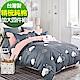 9 Design 漫步雲端 加大四件組 100%精梳棉 台灣製 床包被套純棉四件式 product thumbnail 1