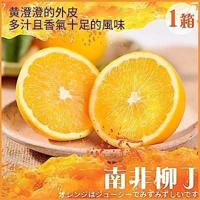 【天天果園】南非無籽甜橙(柳丁)每箱34粒 x1箱