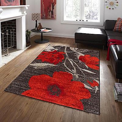 Ambience-比利時Blossom現代地毯 -嫣紅 (200x290cm)