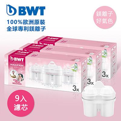 BWT德國倍世 Mg2+鎂離子8周長效濾芯-九入組