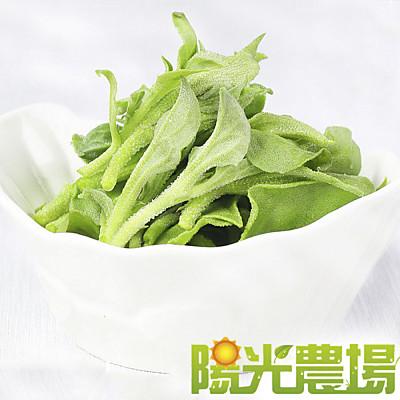 陽光農場  網室栽種水晶冰菜120g(6盒入)