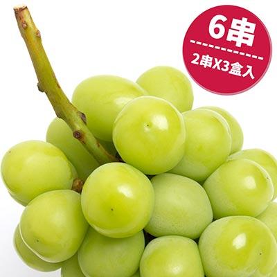 日本麝香葡萄綠無籽共6串入