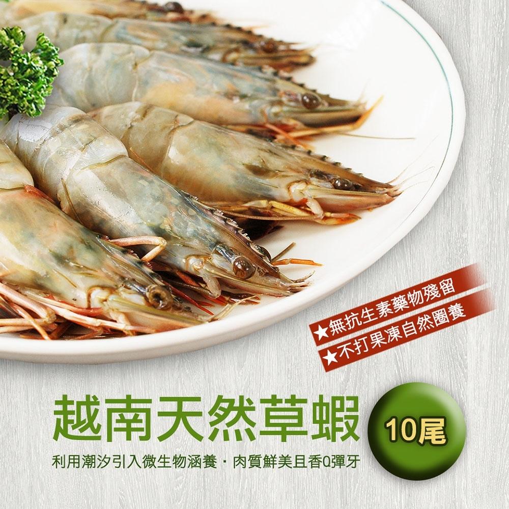 (滿額)築地一番鮮-鮮美大草蝦10尾裝(淨重約380g)