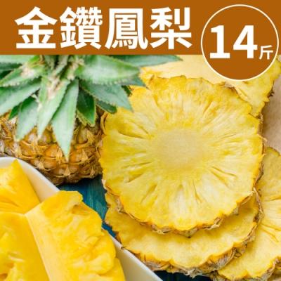 [甜露露] 台灣金鑽鳳梨1箱14斤(9-14入)