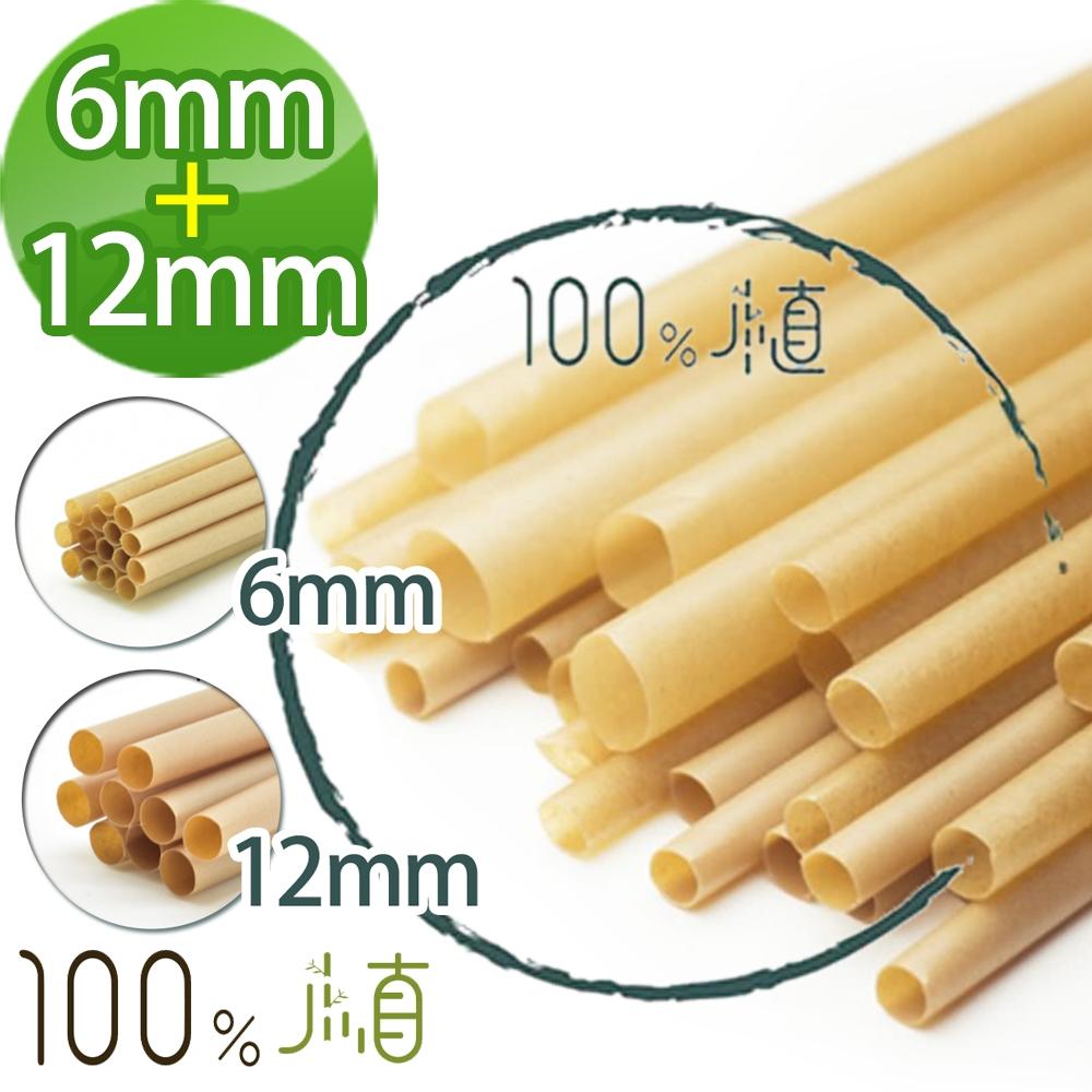 [100%植] 100%植甘蔗環保吸管斜口6mm(100支/包)+12mm(100支/包)