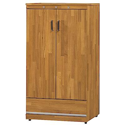 綠活居 史羅姆現代2尺二門單抽鞋櫃/玄關櫃-61x41x120cm免組