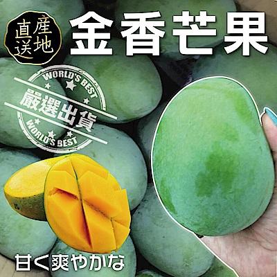 【天天果園】稀有帝王金香蜜芒果10斤(約15-18顆)