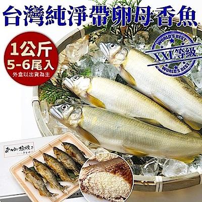 【海陸管家】特選宜蘭帶卵母香魚6盒(每盒5-6尾/共約1kg)