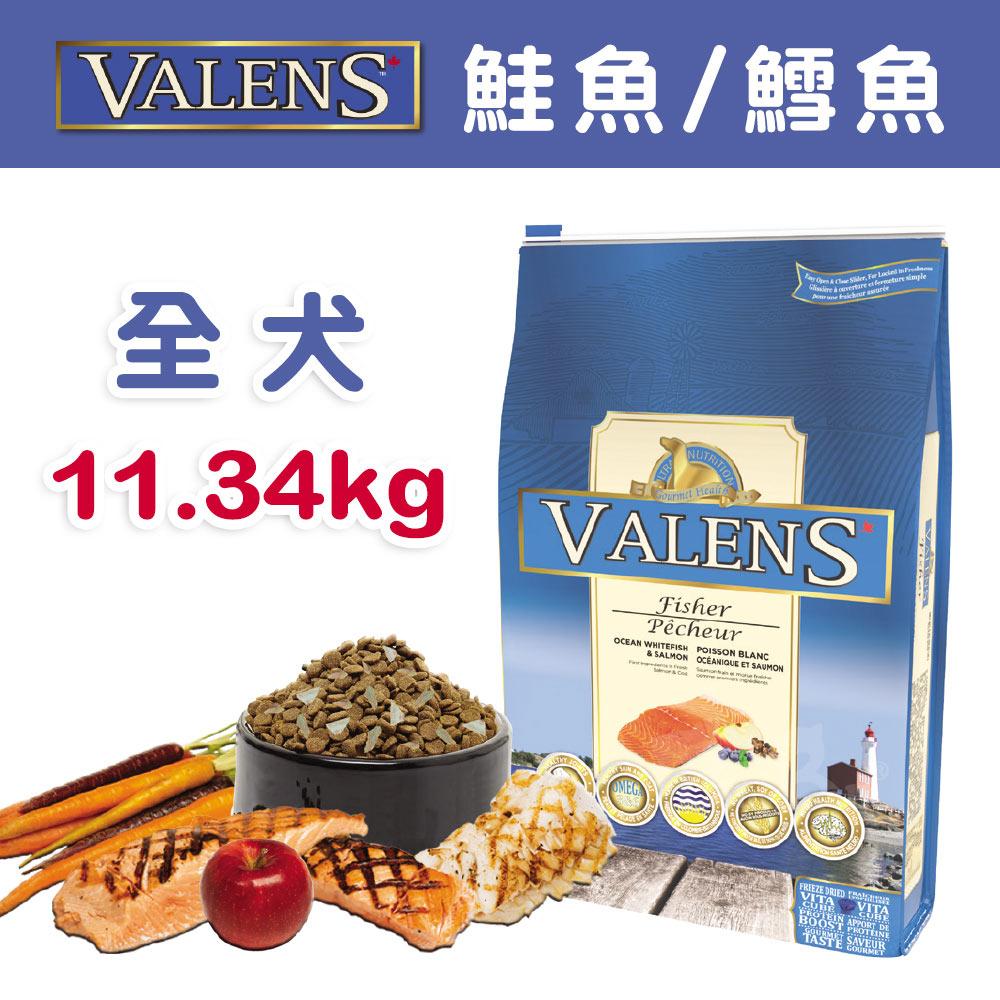 【VALENS威倫】全犬-冷凍乾燥原食配方-鮭魚/鱈魚 11.34kg