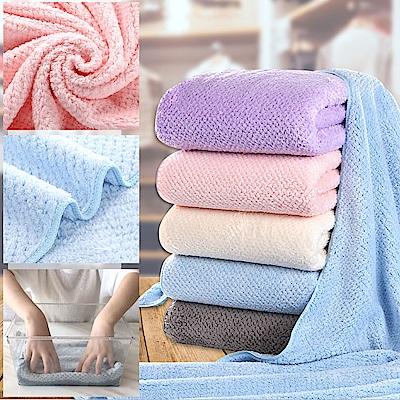 (贈典雅毛巾浴巾掛架) EZlife 纖柔菠羅格超吸水微米紡滑紗毛巾浴巾組