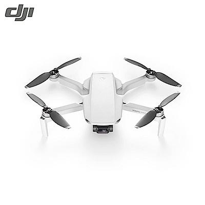【DJI】 Mavic MINI 套裝版 +Care隨心換 組合  輕巧型空拍無人機(公司貨)