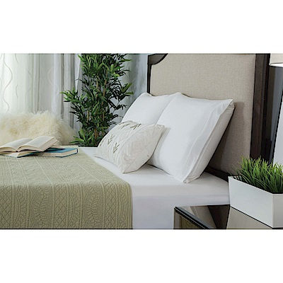 美國寢之堡 防水防螨透氣 竹纖維全密封枕頭套-2入