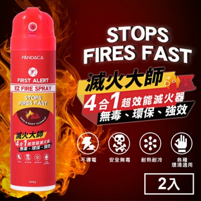 Marvelmax嚴選 台灣製滅火大師4合1車用家用超效能滅火器600g(2入)