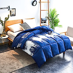 A-one - 可水洗-單人床包/雙人羽絲絨被三件組_翻轉世界
