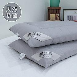 OCEAN 抑菌備長炭麥飯石感溫枕-二入(台灣製)