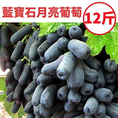 [甜露露]智利藍寶石月亮葡萄12斤原裝箱(8-9包)