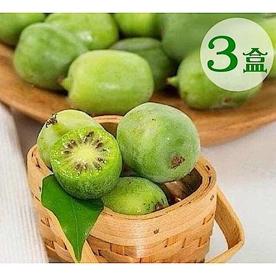 【天天果園】紐西蘭Kiwi berries寶貝奇異果(每盒約125g) x3盒