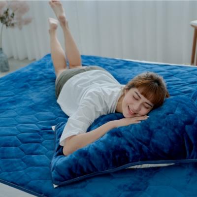Adorar愛朵兒 典藏原色法蘭絨平單式兩用保暖枕墊(2入)-多款任選