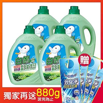 白鴿 天然濃縮防螨洗衣精-天然尤加利3500gx4入/箱(加碼送白鴿洗衣精220gx4)
