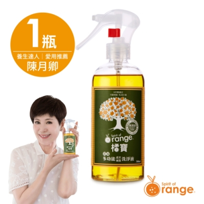 (主推橘寶) 橘寶濃縮多功能疏果碗盤洗淨液-1瓶