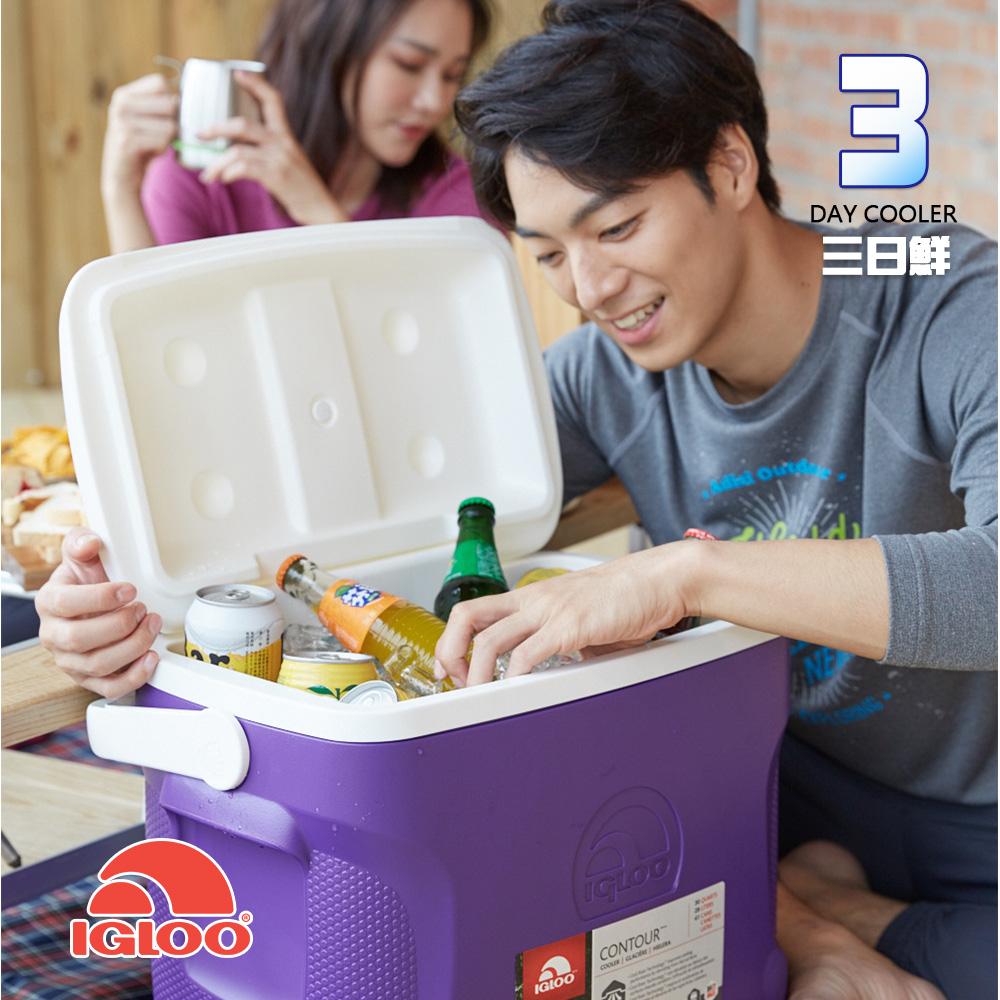 IgLoo CONTOUR系列30QT冰桶49479 紫色