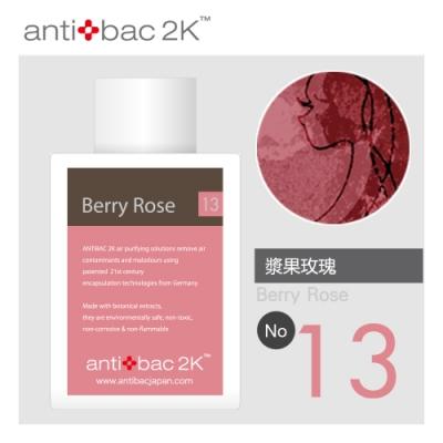 安體百克antibac2K 120ml 空氣淨化液SOLUTION 漿果玫瑰(莓果)