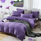 Hilton希爾頓 仙境系列頂級60支紗純100%天絲銀纖維單一被套-紫
