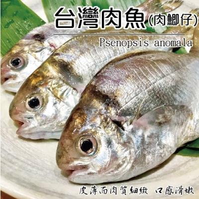(滿699免運)【海陸管家】新鮮野生肉魚/肉鯽仔 共2尾(每尾約120g)