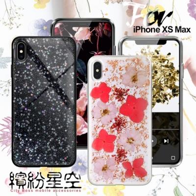 CITY BOSS iPhone XS Max 繽紛星空防滑保護殼-玫瑰金飛燕/ 星空