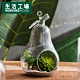 【雙11暖身3件3折-生活工場】淨透微光燈工梨型花器 product thumbnail 1