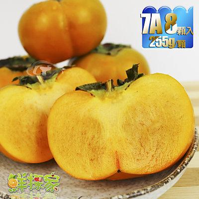 鮮採家 特級摩天嶺高山7A甜柿8入禮盒(單顆6.5-7.4兩)