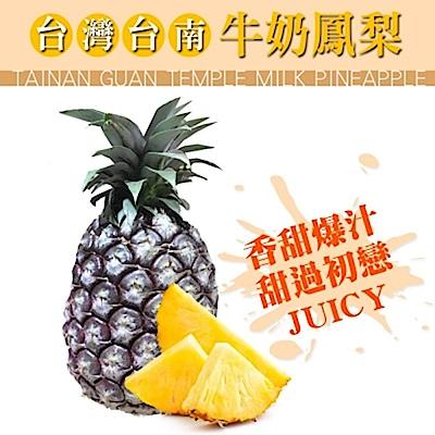 【天天果園】台灣嚴選牛奶鳳梨(每支約1.3kg) x2支