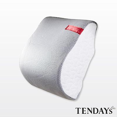 TENDAYS 柔織舒壓車用減壓頭枕