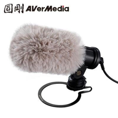 圓剛 AM133 外接式收音麥克風 即刻直播、錄影專用