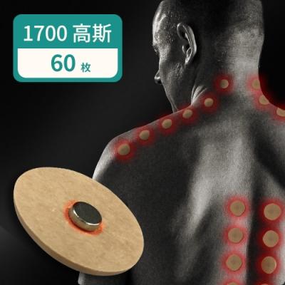家適帝 台灣製加強版舒緩磁氣絆1700G高斯(10枚x6包)
