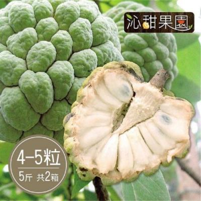 沁甜果園SSN‧台東大目釋迦(4-5顆裝/5台斤)(共2箱)