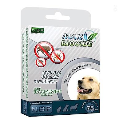 西班牙NBP防蚤項圈-大型犬用