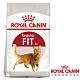 Royal Canin法國皇家 F32理想體態貓飼料 4kg product thumbnail 1