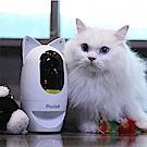 波寶PAWBO+寵物互動攝影機-貓耳閃亮組