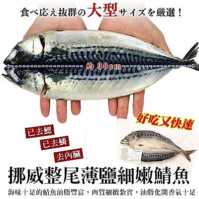 【海陸管家】挪威3去處理薄鹽鯖魚40尾(每尾約180g)