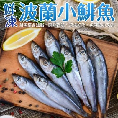 (滿699免運)【海陸管家】嚴選波蘭無剌鯡魚1包(每包約200g)
