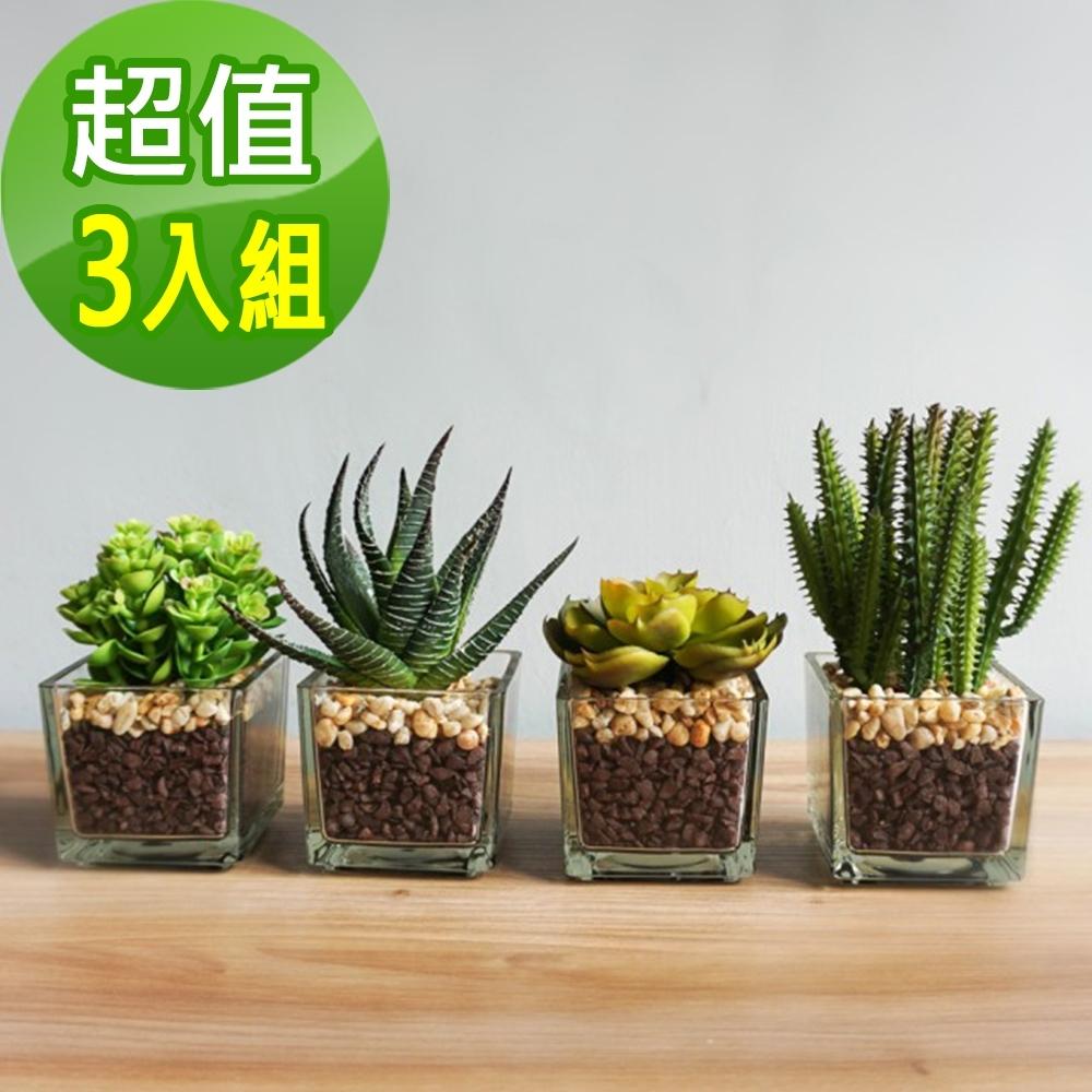 【Meric Garden】仿真迷你多肉療癒小盆栽-3入/組(綠霓、條紋蛇尾蘭、仙人柱)