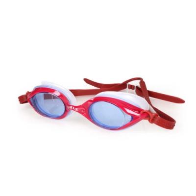 SABLE 101T系列平光泳鏡 紅