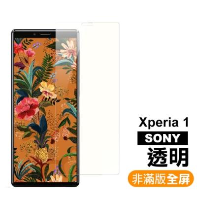 SONY Xperia 1 透明 9H鋼化玻璃膜 手機螢幕保護貼